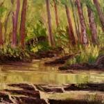 Creek in the Cumberlands